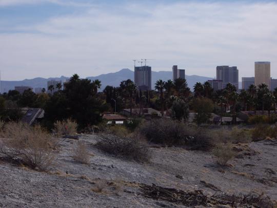 Desert Springs Preserve