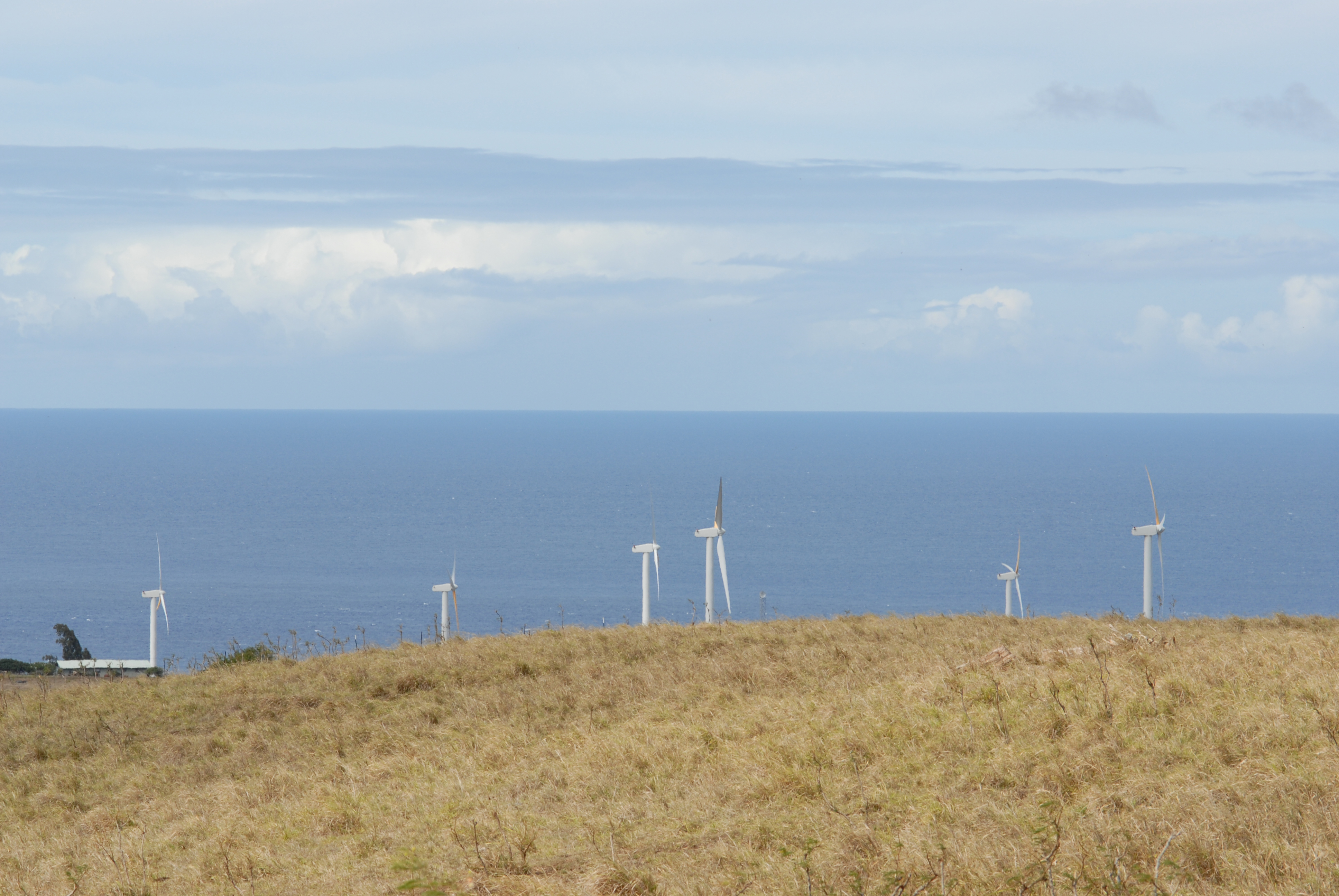 Windmills near Hawi, Hawaii: photo by Jay Torborg
